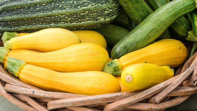 Try to use squash within a few days and only select those that are glossy looking and firm with no brown spots or obvious wilting.
