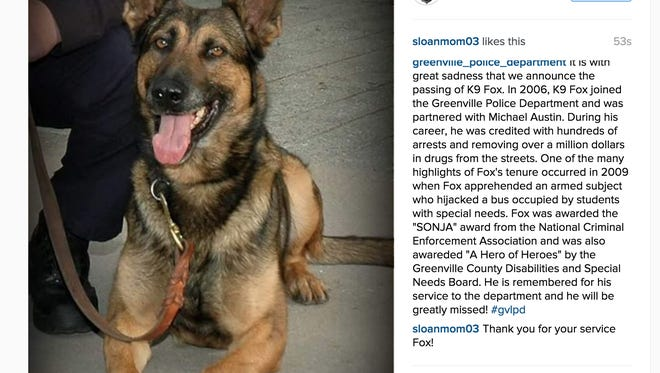 Greenville Police mourn Fox, a K-9 who served with the department since 2006.
