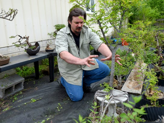 Jarod Kearney talks about one of the several bonsai