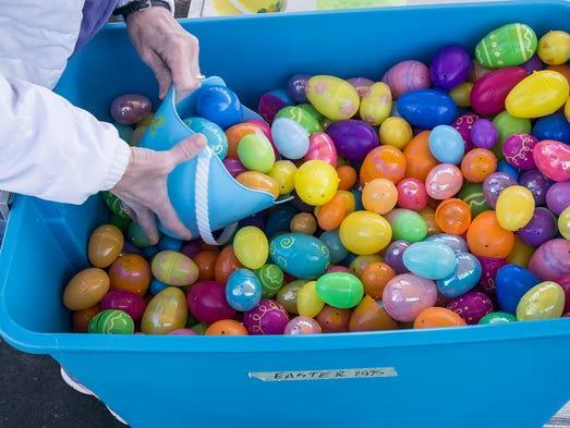 Volunteers begin spreading eggs for the hunt.