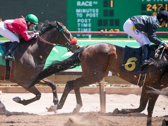 Jockey Erin Walker races at Turf Paradise horse racetrack
