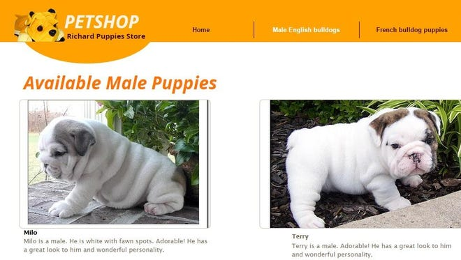 Richard Puppies Store advertises French and English bulldogs for sale, but the Cincinnati BBB warns that it doesn't appear to be a legitimate business.