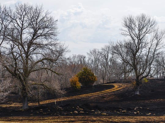 A grass fire scorched about 167 acres of land and damaged a Minnesota Department of Corrections storage building and Graystone Nordic Ski Trails on Sunday. The area is shown Monday, April 30, near the St. Cloud Prison.