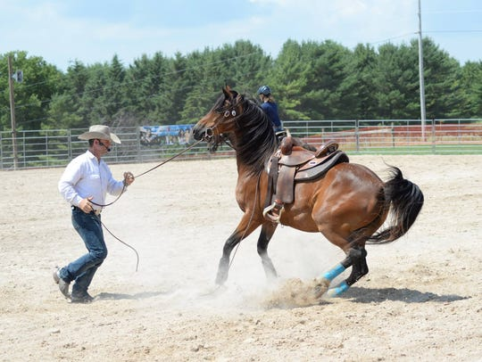 The equine area at Farm Technology Days will feature