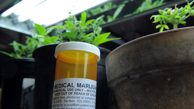 Starting Oct. 8, Michigan medical marijuana patients and their doctors can complete their registrationsonline.