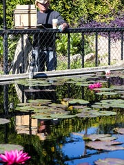 Greg Stocks from Arizona paints a scene at the International Waterlily Collection in Civic League Park during EnPleinAir Texas in 2017. The event runs through Oct. 27 this year.