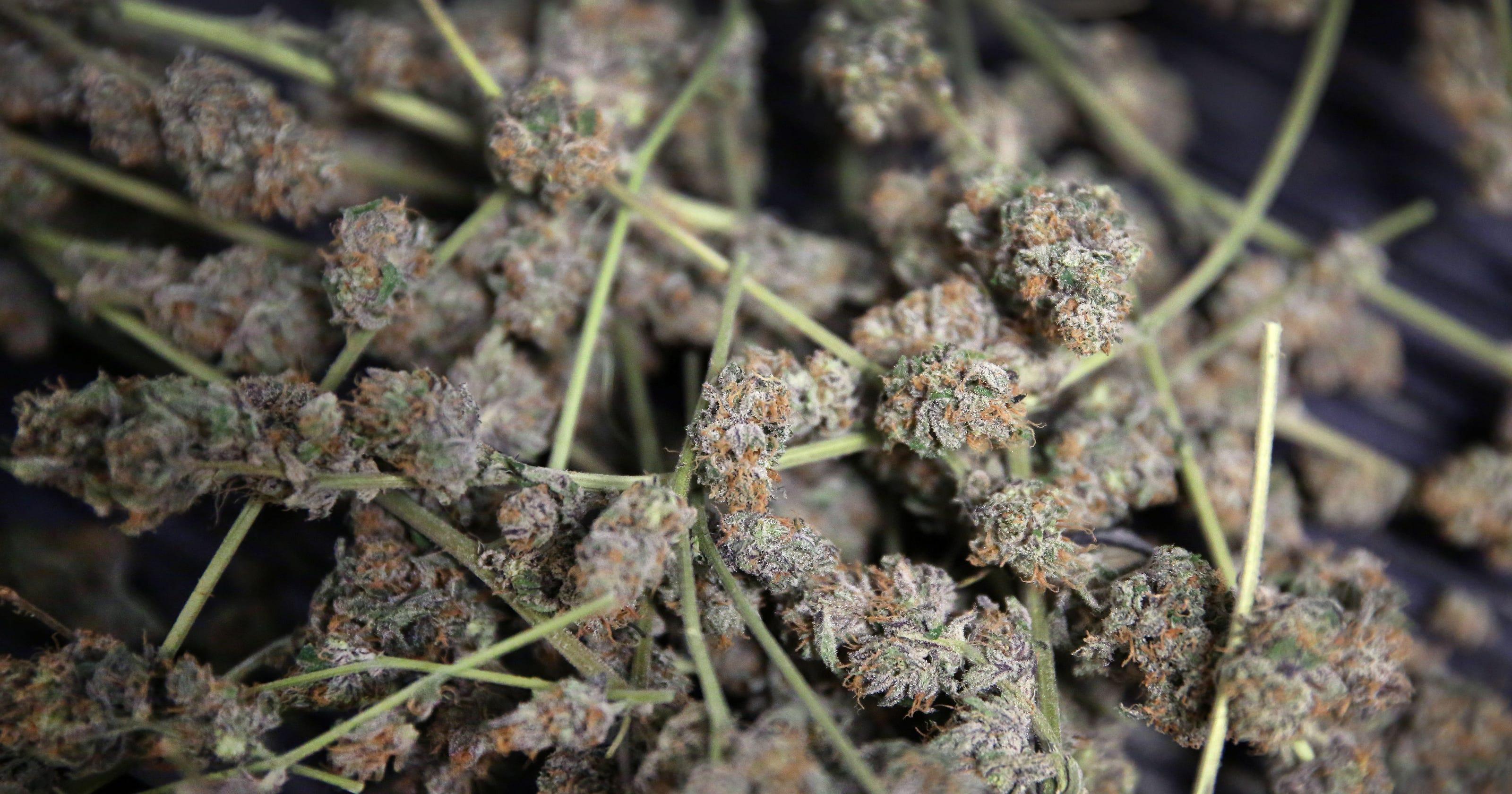 what category does marijuana fall into