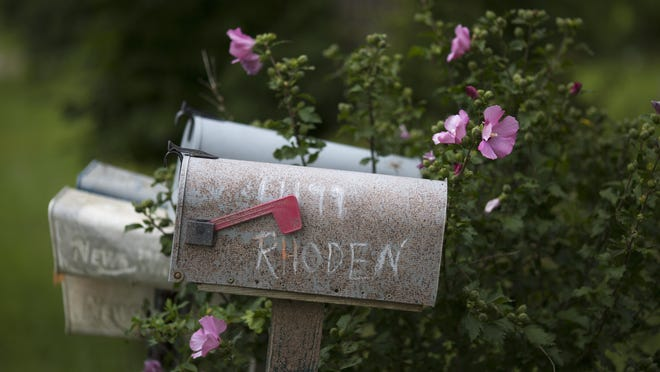 Aug. 10, 2016: Rose of Sharon bushes are in bloom around the mailboxes that now have no residents. The trailers that housed Frankie Rhoden and Hannah Gilley now sit sealed in a warehouse miles away in Waverly.