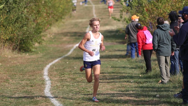 Hayden junior Tanner Newkirk repeated as a regional champ Saturday at El Dorado, helping the Wildcats earn a team berth for the Class 4A state meet at Wamego.