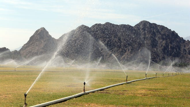 Sprinklers water a sod farm in Indian Wells that also serves as a grass parking lot during the BNP Paribas Open. The Coachella Valley Water District says the Indian Wells Tennis Garden uses a private well and has signed up to start using recycled water supplied by the agency. Photo taken on Thursday.