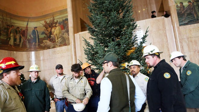 Oregon's holiday tree, a 23-foot-tall noble fir, arrives in the State Capitol rotunda a day after being cut down in the Tillamook State Forest.