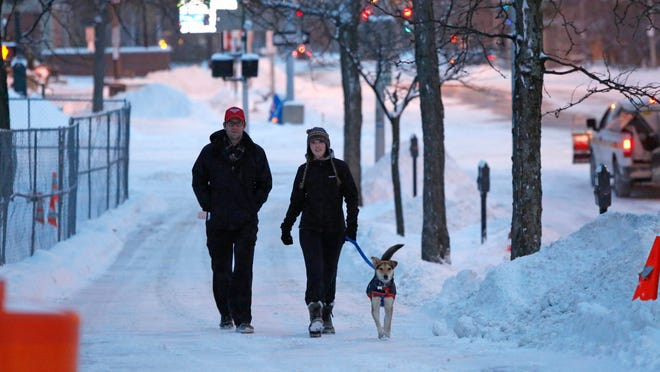 This year's mounds of snow have begun to melt, revealing lots of long-buried stuff, from signs and bottles to dog waste. Several local companies have found booming business in picking up after dog owners who would rather not stoop to scoop.