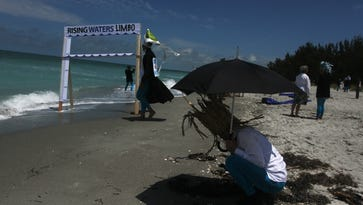 """Robert Rauschenberg Residency Members displayed art Saturday on Captiva Island to bring attention to an expected rise in ocean levels by 2050 due to Global Warming. In the foreground, resident Rachel Armstrong writes a """"love letter"""" to the ocean in seaweed, """"Taken for Granted"""" was the message."""