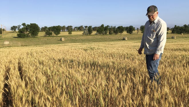 North Dakota farmers like John Weinand said many crops won't even be worth harvesting due to the severe drought this summer. A shortage of federal workers have left many farmers waiting a month or more for service, according to a Democratic senator.