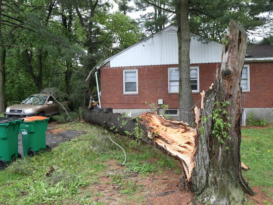 A fallen tree on Rockwell Place in Fishkill on May