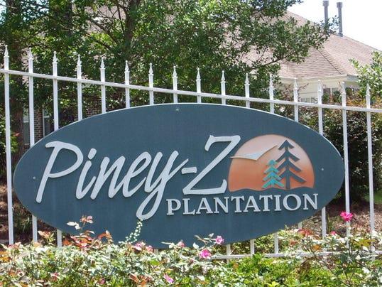 Piney Z plantation 013