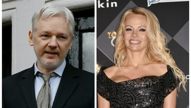 Pamela Anderson has penned a passionate defense of Julian Assange.