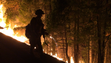 A firefighter sets a backfire during a burnout operation at the King Fire.