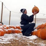 Jennifer Geisheker searches for the perfect pumpkin at Spooky's Pumpkin Patch.