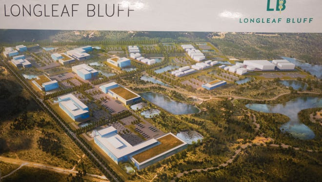 An artist's rendering of Longleaf Bluff, part of the new Bluffs project being planned for Escambia County.