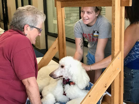 Annelise Sherrill of Redding, right, says hello to Janice Galloway, left, and her standard poodle named Abby on Saturday during the Minds Matter Resource Fair. Galloway and Abby are with Prescription Pets, whose volunteers make visits with their therapy dogs to hospitals and skilled nursing, assisted living and rehab centers.