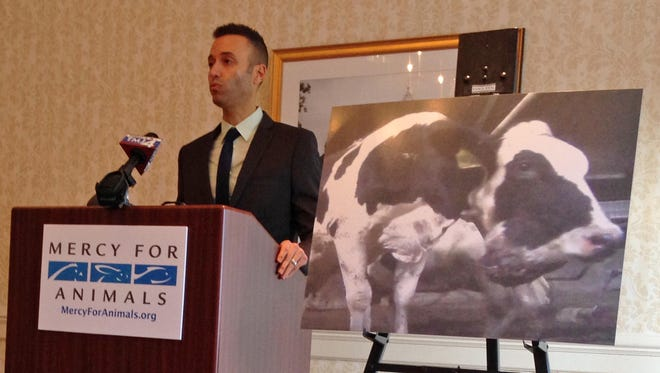 Ari Solomon, spokesman for Mercy for Animals, speaks in Milwaukee about an undercover investigation at a farm in Greenleaf, Wis., in 2013.