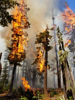 The Whitewater fire is burning the Mount Jefferson Wilderness area.