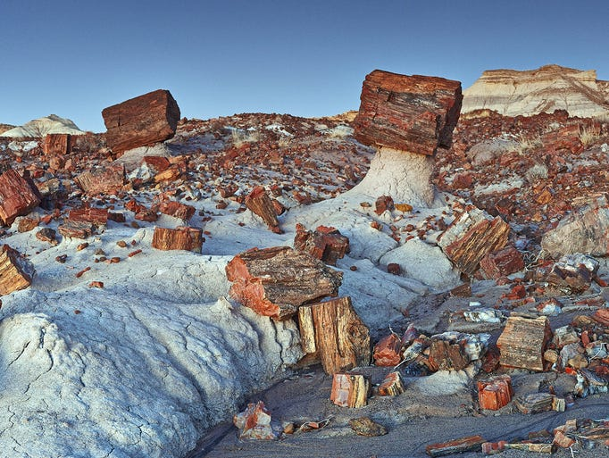 It is illegal to remove anything from the Petrified Forest. Pieces of petrified wood can be legally purchased at many places in and outside the park.