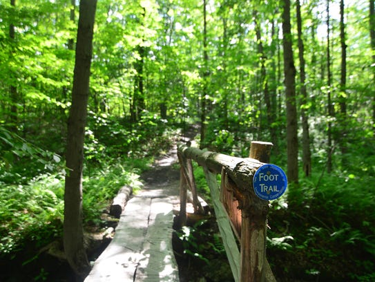 The start of the trail to the fire tower.