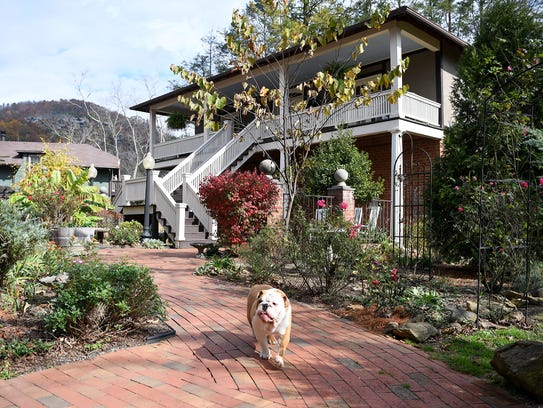 Finn, the bulldog, walks between the Reynolds Mansion