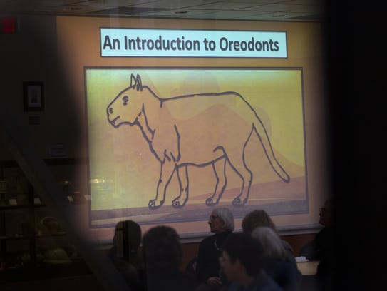 A drawing of an oreodont is projected on a screen Wednesday during a presentation at the Sherman Dugan Museum at San Juan College in Farmington.
