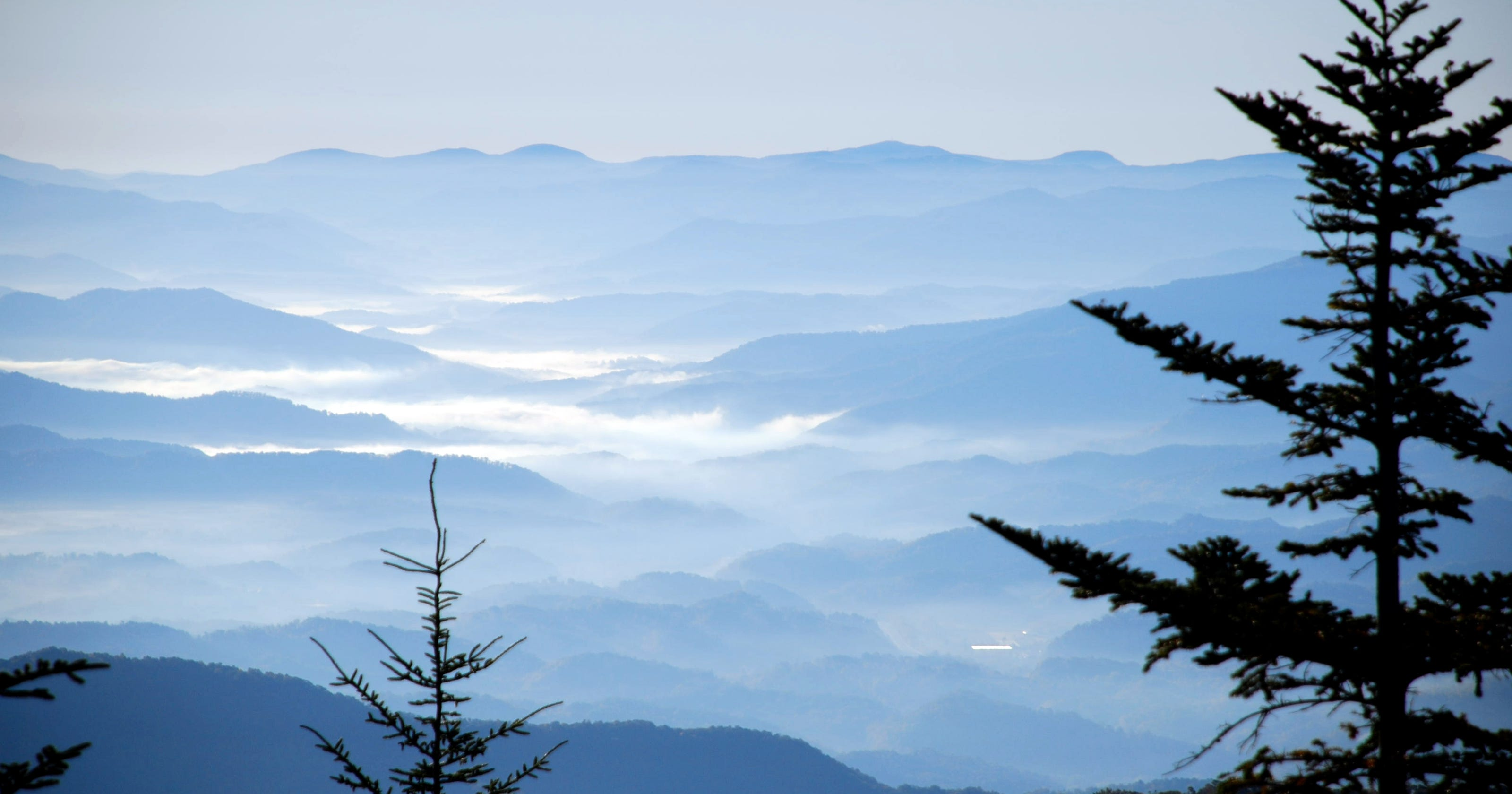 Great Smoky Mountains: Lush forests, falls and black bears
