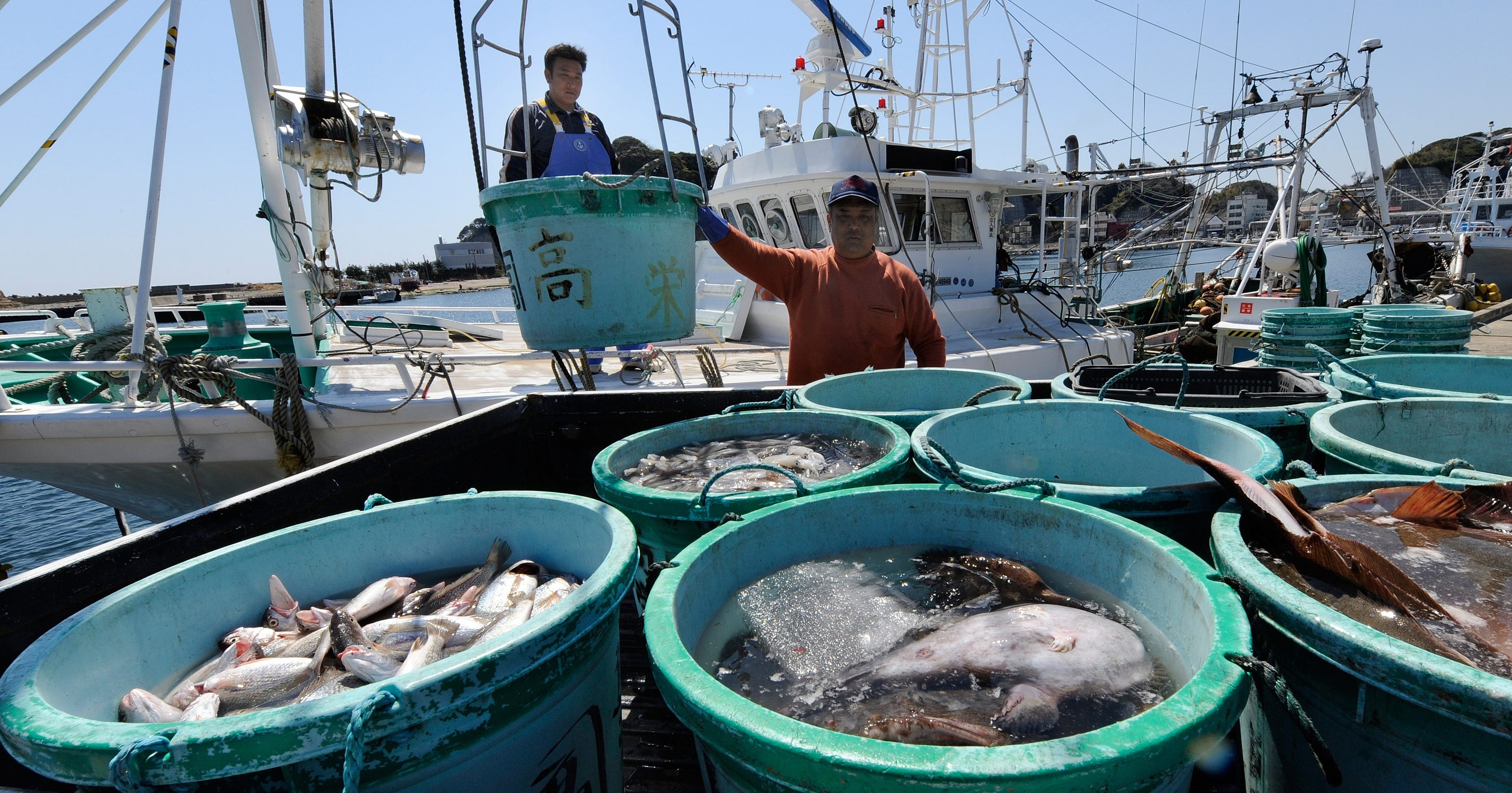 Radiation still high in fish near fukushima for Fish delivery near me