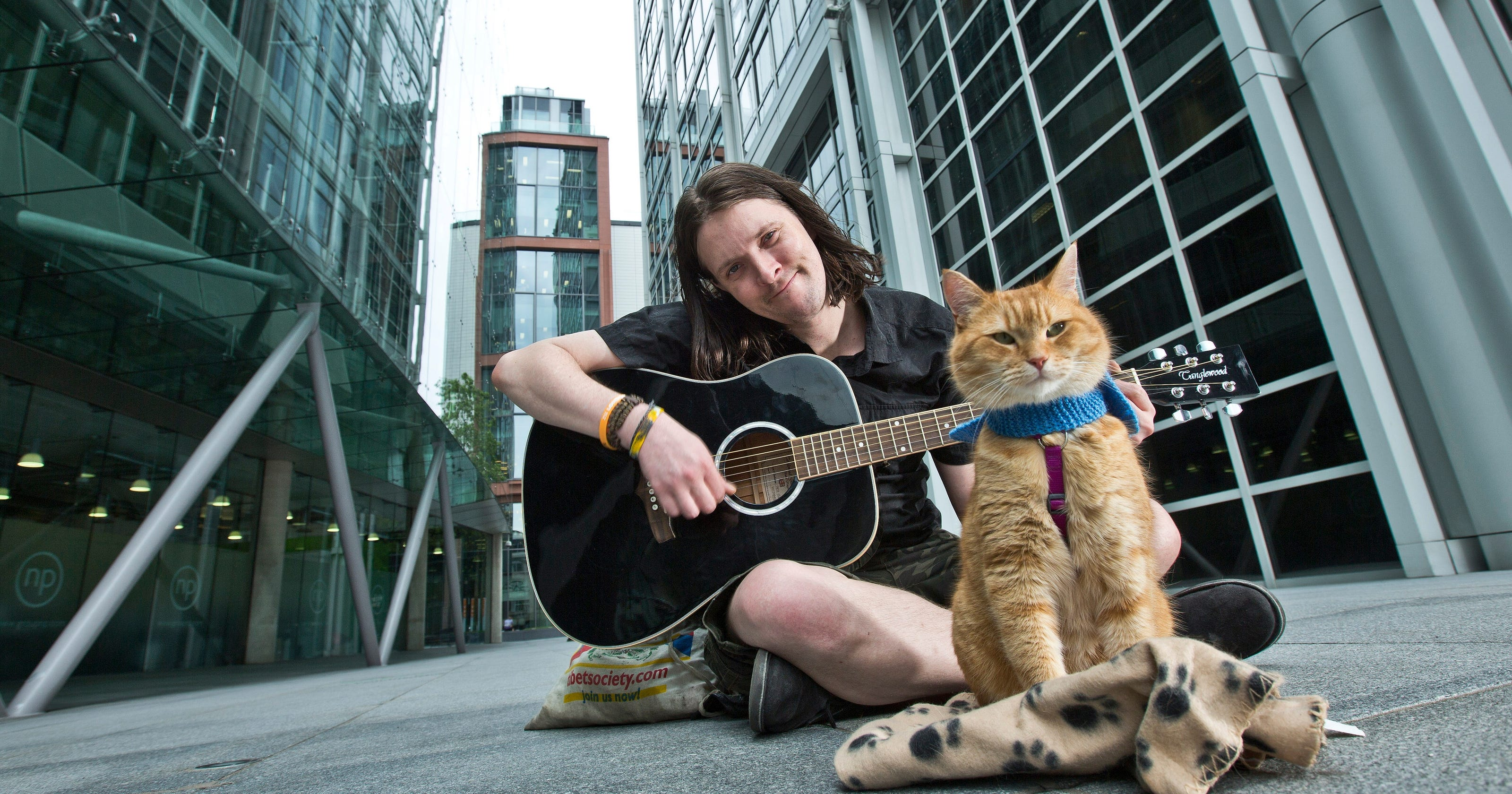 a street cat named bob subtitles download