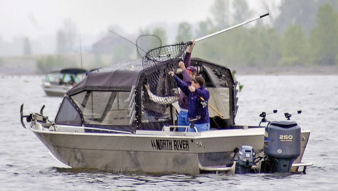 Officials in Oregon and Washington set the fishing season for spring chinook on the Columbia River.
