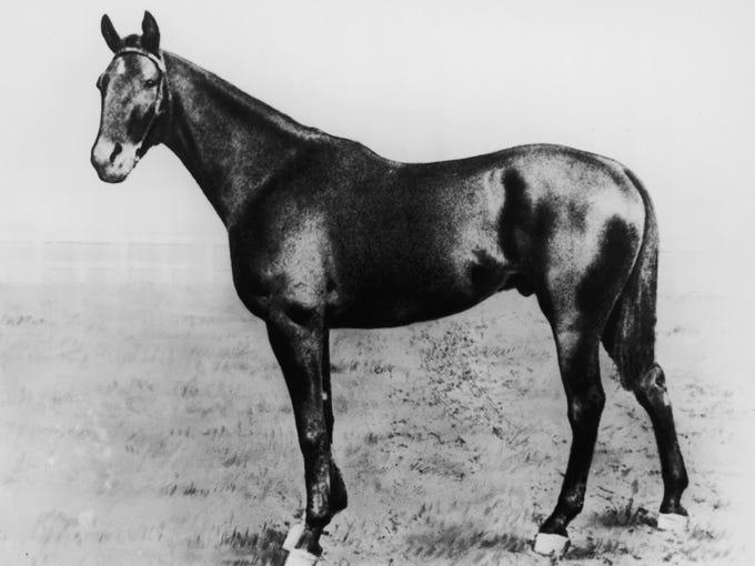1899 Kentucky Derby winner, Manuel.