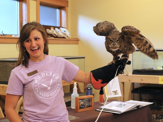 Wildlife in Need Center wildlife educator Alex Lemmer gives Dakota the Great Horned Owl a chance to stretch his wings  during a past meet and greet. Dakota and other avian ambassadors from the center will be at the Oconomowoc Public Library this Saturday.