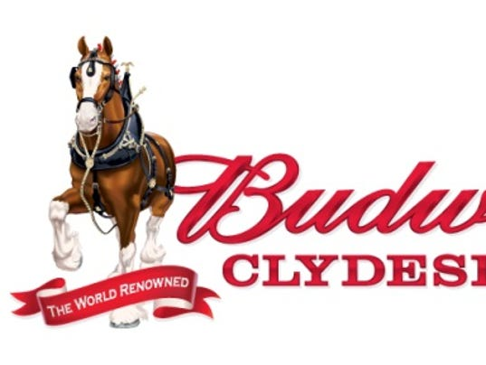 635805136675481254-horses