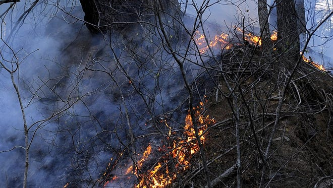 Brush fires or wildfires, like this one in 2012, can consume thousands of acres. The fire during the past year at Jennings Branch was small by comparison.