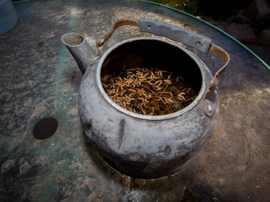 A pot left outdoors can often fill with standing water,