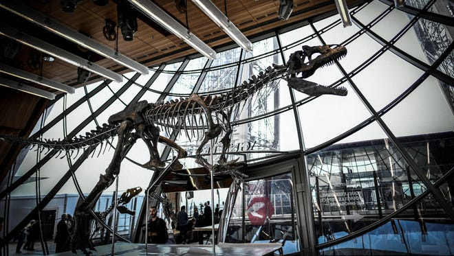 A picture taken on June 2 shows a skeleton of an undeterminate carnivorous dinosaur on display at the first floor of the Eiffel Tower in Paris.