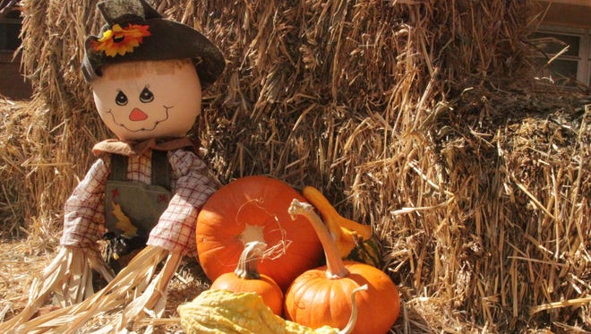 Family friendly or terrifying, Halloween events are bountiful in the area.