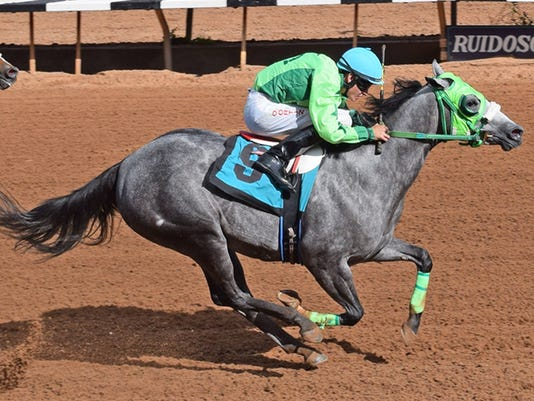 Mountain-Top-NM-QH-Futurity-Trial-10-Running-Dragon-9.jpg