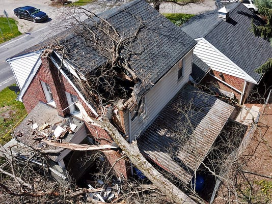 Two injured when tree crashes through roof of home