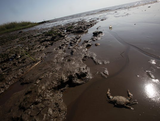 One Year Anniversary Of BP Oil Spill Approaches