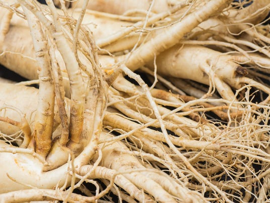 Dry Ginseng Roots.