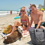 Yogi catching some rays with Amy McDonough and Stephen Beckler at  Canova Beach Park, in Indian Harbour Beach, on Memorial Day. This area is Brevard's only dog-friendly stretch of beach.