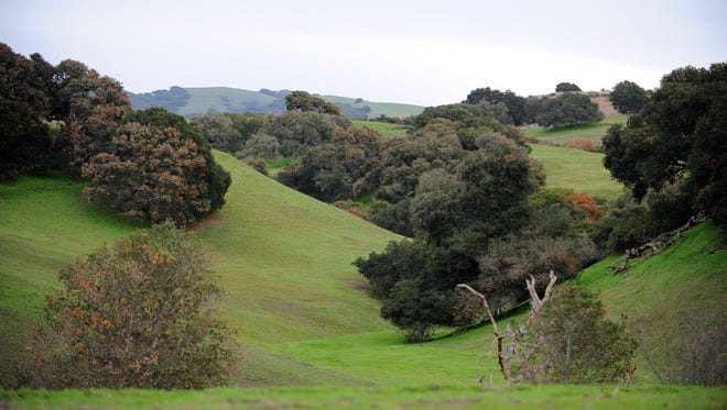 A view of proposed Ferrini Ranch development looking south from Highway 68 in Salinas.