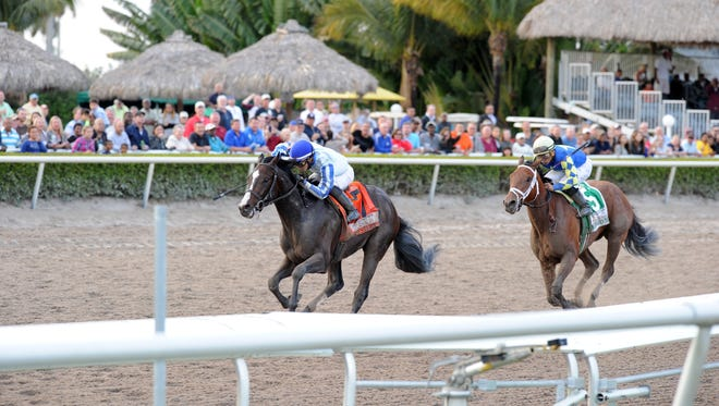 Upstart, left, topped Itsaknockout in the Fountain of Youth but was afterward disqualified by stewards.