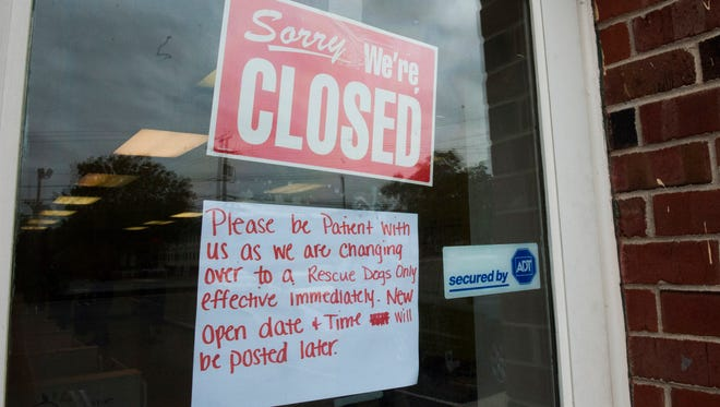 Pat Youmans, owner of Pat's Pups in Cherry Hill, has agreed to change his store model to rescue dogs only. Thursday, October 1, 2015.